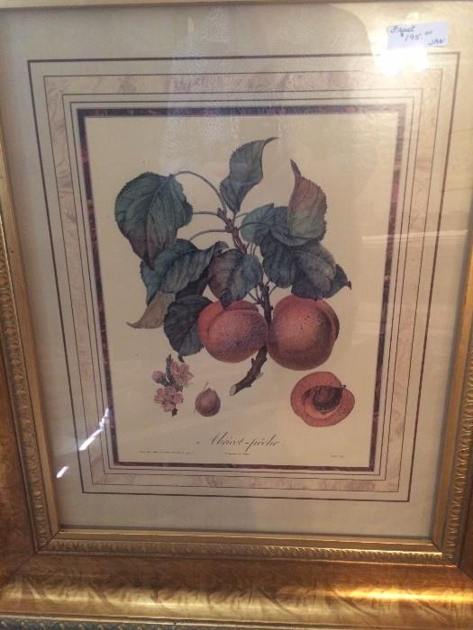 One of four beautifully framed fruit prints