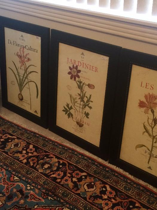 Three of four black framed botanical prints