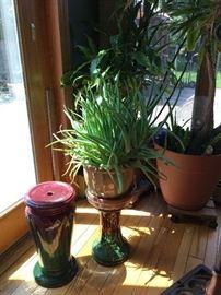 Plants, Pedestals