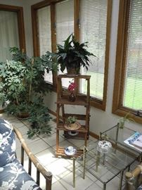 More plants and plant stand
