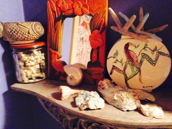 Collections of shells and such
