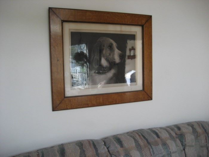 Oak-framed Dog Print