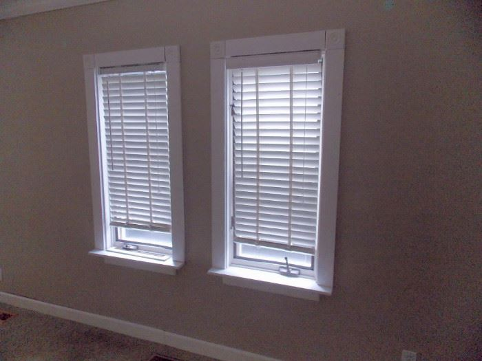 Demolition sale nice home in barrington starts on 9 24 2016 for Best window treatments for casement windows