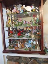 Wild bird display case is full.