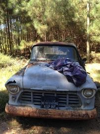 1955 Chevrolet 3100 Pickup  One owner, original title Does not run Needs restoration $2500
