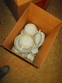 Coronet Dishes 8 Place setting plus extras