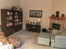 Family room with bookcases, books, hide-a-bed etc