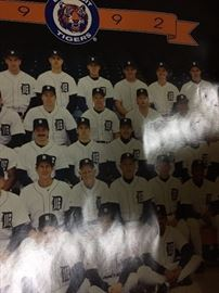 Tigers 1992 poster