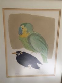 Watercolor birds signed by the artist $45