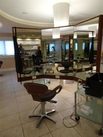 Wonderful Mirrored Partition or Customer Station