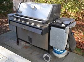 Weber Summit Gold grill
