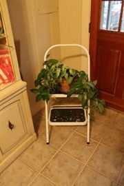Step stool and plant