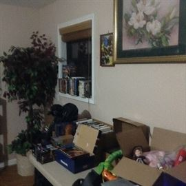 Pictures, picture frames, DVDs, videos, toys, jewelry, artificial ficus tree.