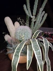 silkcactus