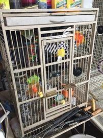 Large birdcage holding Amazon parrot.