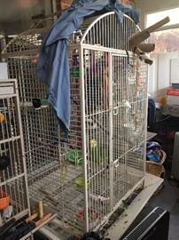 Largest cage holding talkative parrot who oinks! And Meeows!!