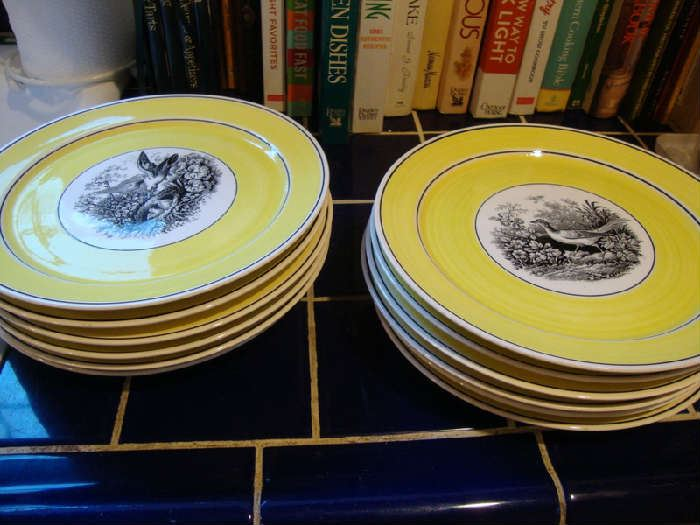 Villeroy and Boch Plates India Pattern