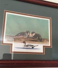 Artist Proof duck print