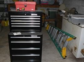 Sold Brand New Craftmans rolling tool box, Amana Deep Freezer.  Sold Werner 8 ft. ladder .