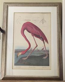 Lg Audubon Flamingo