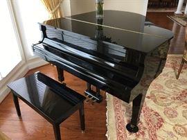 Kauai Piano in impeccable condition
