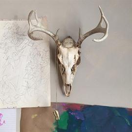 deer skull & children's drawings