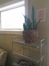 metal baker's rack on wheel - great plant stand!