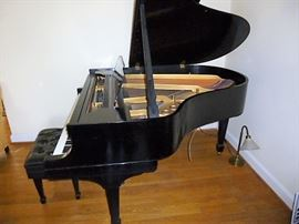 Steinway Piano - Scroll down for several detailed photos & recent professional inspection - she is a beauty!
