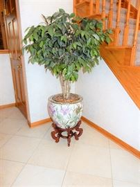 Ficus Tree Faux, in a Koi Pot with Stand