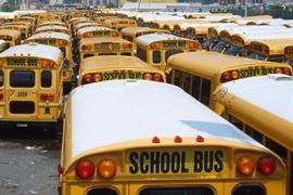 IPS buses