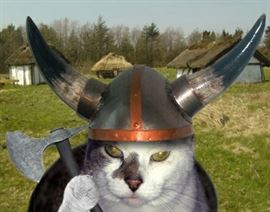 vikingcats REV