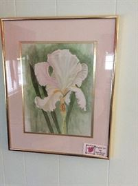 Original Watercolor - Bearded Iris
