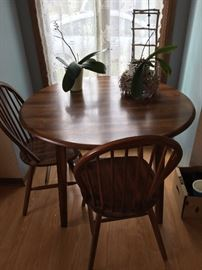 round kitchen table and 2 chairs, 2 plants