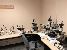 5 High Quality Microscopes-Olympus, B & L, Nikon