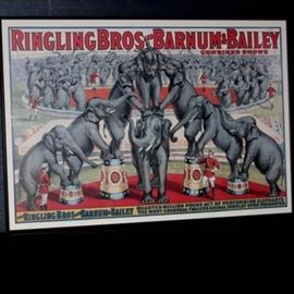 Vintage Ringling Elephant Circus Poster: An original 1950s Ringling Brothers, Barnum and Bailey framed circus poster. The color lithograph advertising poster touts the combined Ringling Bros./Barnum and Bailey show, highlighting the elephant acts. The image depicts a pyramid of pachyderms in the foreground, with more performing elephants in the background. It was billed as a quarter million pound act. The poster is housed in a black metal frame.
