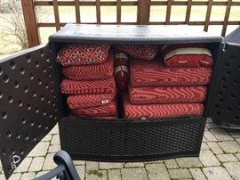 These are the cushions that go with the black rattan furniture
