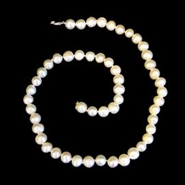 Pearl Necklace: A pearl necklace.