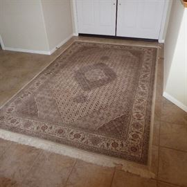 One of many area rugs