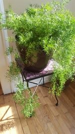 Large Fern Tiled Table