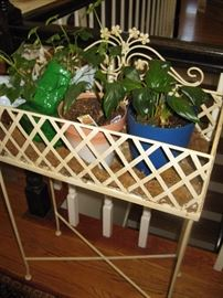 planter and plants