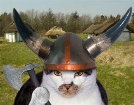 vikingcats