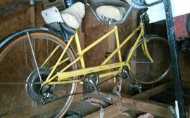 Schwinn DeLuxe Twinn 2 person bike