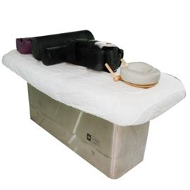 Earthlite Hydraulic Massage Table: An Earthlite hydraulic massage table. Features a warming mattress pad with heat control settings, a face pillow, and an adjustable bodyCushion set. Item is operable.