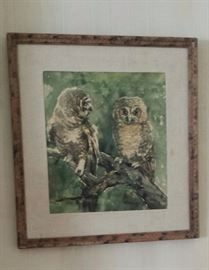 Water color Owls