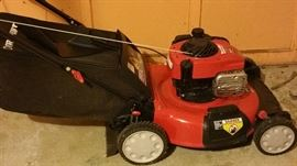Lawn mower with bag