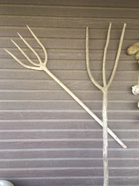 Vintage pitchforks made it out of roots from a Spanish tree