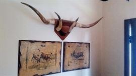 mounted long horn ,horns