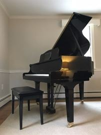 Black Lacquer Yamaha Baby Grand Piano: tuned and ready to play!