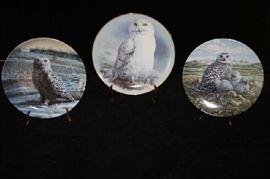 Snowy Owl Plates