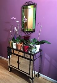 Small mirrored cabinet, orchid collection